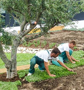 izrada zemljanih radova